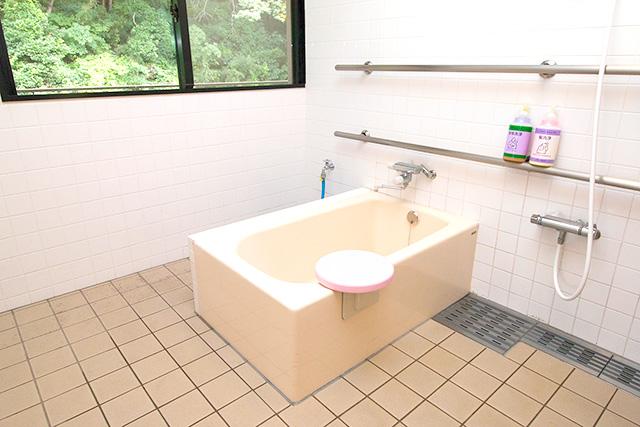 清潔な個人浴槽